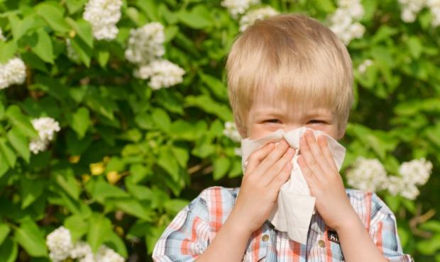Allergiat ja liikunta